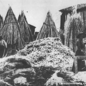 Il tempo della canapa – Un primato nazionale di canapicoltura